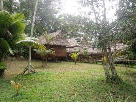 Iquitos y Su Magica Selva Amazonica