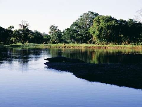 """Iquitos Cumaceba Lodge"""